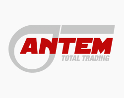 Logo design Antem