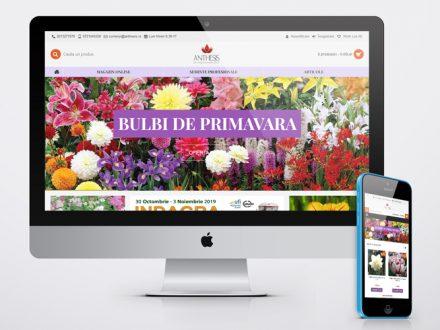 Creare Magazin online Anthesis